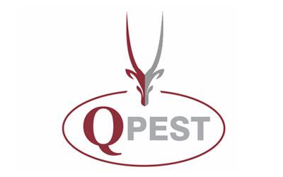 Logo Designers Qatar